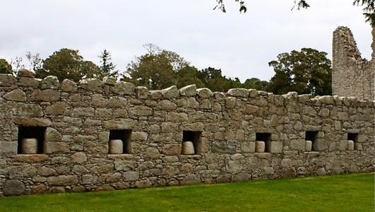 Bee Boles - Tolquhan Castle