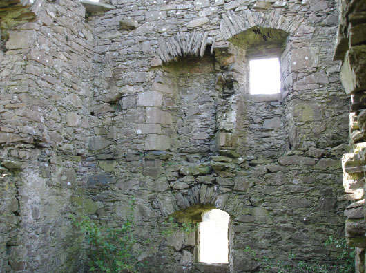Plunton Castle interior